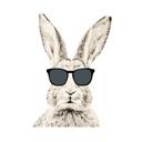 Шоколадный заяц на Челюскинцев, студия загара