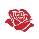 Еврофлора, ООО, оптово-розничная компания по продаже цветов