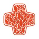 Медилон Фармимэкс, сеть аптек