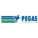 PEGAS Touristik, сеть турагентств