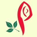 Правильные цветы, оптово-розничный магазин цветов