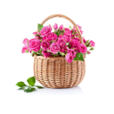 Цветочный стиль, салон цветов