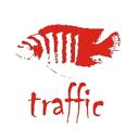 Трафик, торгово-производственная фирма