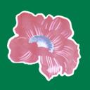 Сеть магазинов цветов, ФЛП Кильдеев Д.А.