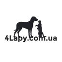 Четыре лапы, ветеринарная клиника