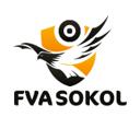 FVA SOKOL, компания