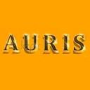 AURIS, банный комплекс