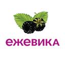 Ежевика, сеть аптек