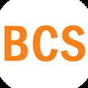 BCS, автосервис