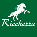 Ricchezza, салон мебели