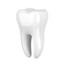 Дентал, ООО, стоматологический кабинет