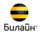 Билайн Бизнес, телекоммуникационная компания