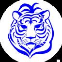 Tiger Group LTD, ТОО