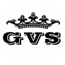 GVS, торгово-монтажная компания