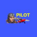 Пилот, гостиничный комплекс