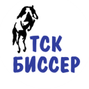 ТСК БИССЕР, ООО, компания