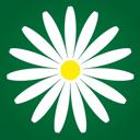 Megaflowers, компания по продаже и доставке цветов