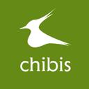 Chibis, стоматологическая клиника