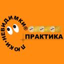 Практика, ООО, проектно-производственная компания