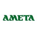 Амета, торговая компания