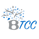 BTCC Basem Hejjeh Tax & Accounting Consultancy, company