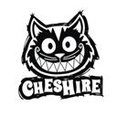 Чеширский кот, кафе и служба доставки