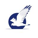 Директ Развитие, курьерская служба распространения рекламной и доставки деловой корреспонденции
