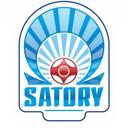Школа чемпионов-Satory, спортивная секция
