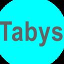 Сервисный центр, ИП TABYS